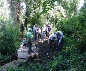 Volunteer Day 2012