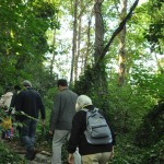 Members of the public walking towards The Glade area after the opening ceremony.