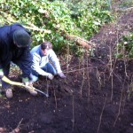 Committee members planting our newly created thicket
